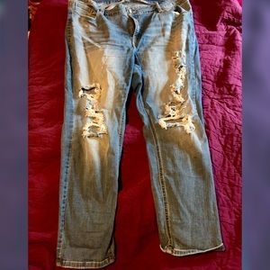 Distressed Eunina Jeans, Size 20.